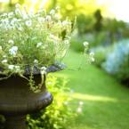 U vrtu može da bude jedna ili više fokalnih tačaka, kao ova saksija rustičnog izgleda.