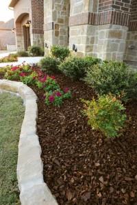 Pokrivač tla može biti sjeckano drvo, kompost, borova kora, borove iglice.