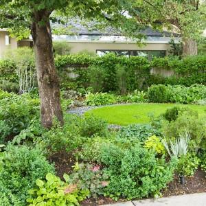 Travom zasadite samo jedan najbolje osvijetljen dio dvorišta.