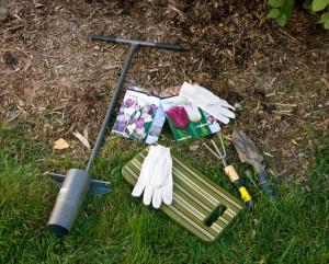 Vrtlarstvo za početnike – sadnja lukovica proljetnog cvijeća  Uredite Dom