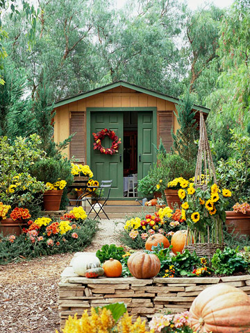 Krizanteme kao jesenja dekoracija vrta  Uredite Dom
